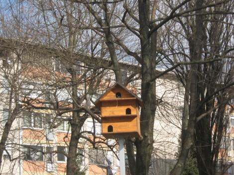 V ljubljanskih mostah lepo skrbijo za ptiče, saj so jim postavili skoraj hotel, ptičja hišica v treh nadstropjih. Zelo lepo in pohvale vredno.