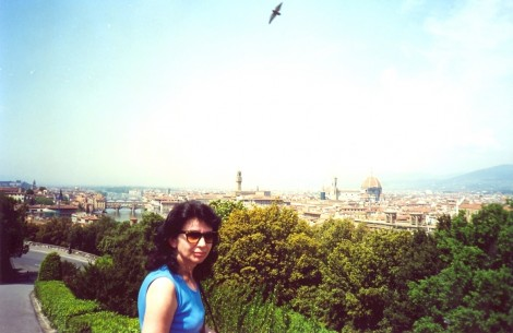 Preden se spustimo po cesti v središče Firenc, je z griča enkraten pogled na večino glavnih znamenitosti.