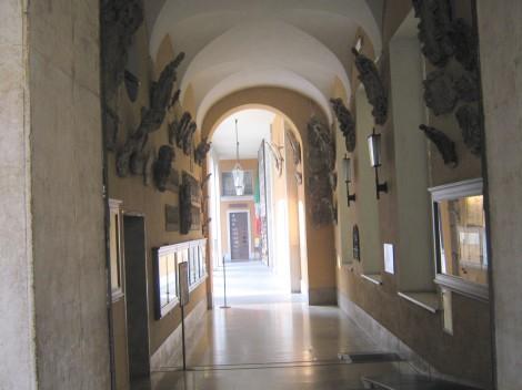 Hodniki univerze z grbi profesorjev in študentov.