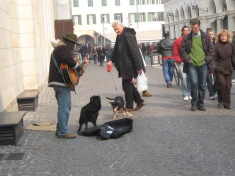 Ob sobotah so ulice Padove zelo živahne. Ulični glasbeniki in njihovi hišni ljubljenčki.
