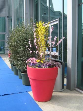 Tudi vhodi na razstavo so bili primerno urejeni s cvetjem