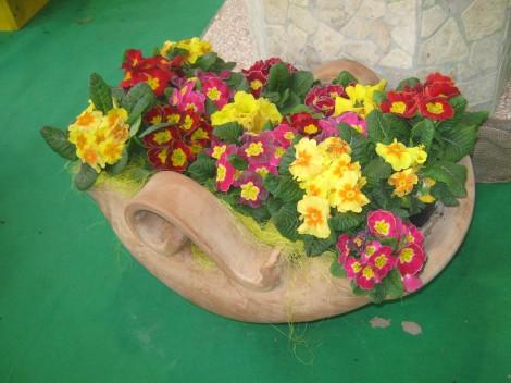 Domiselno cvetlično korito s primulami.