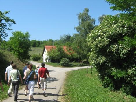Odpravili smo se na grič h pravoslavni cerkvi sv. Petra in Pavla v Miličih.