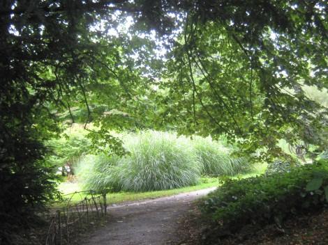 Ob visokih poletnih temperaturah, je v senci dreves prijetno hladno.