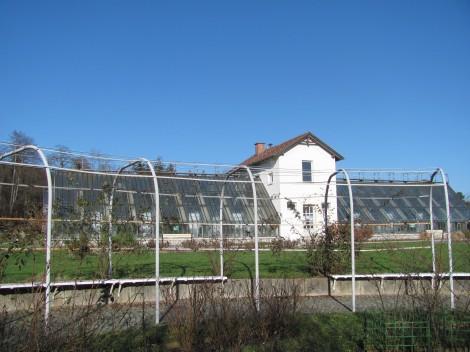 V Tivoliju je urejen rastlinjak, ki deluje pod okriljem Botaničnega vrta Ljubljana.