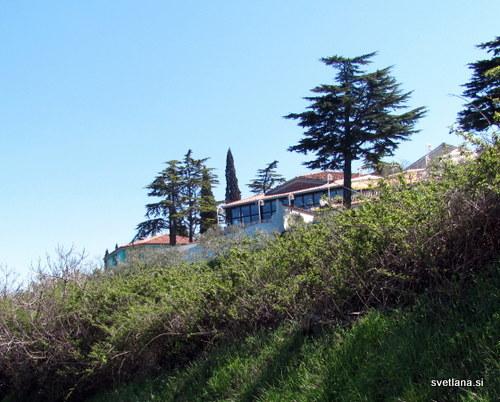 Terasa restavracije hotela Belvedere nad Izolo
