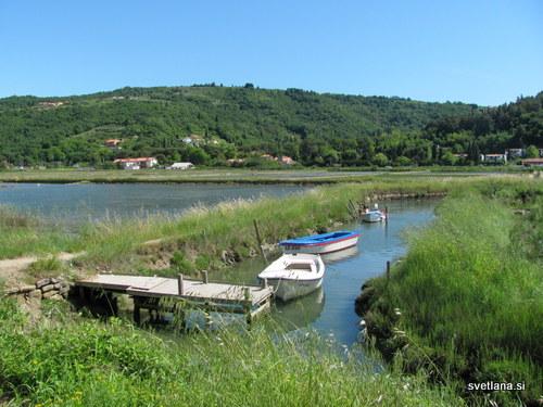 Laguna Stjuža, edina laguna na slovenski obali. Leseni čoln z ravnim dnom se imenuje batana